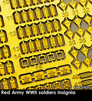 Red Army WWII Soldiers Insignia - Image 1